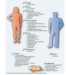 In wieviel, um Rauchen aufzugeben, an den Krebs nicht krank zu werden