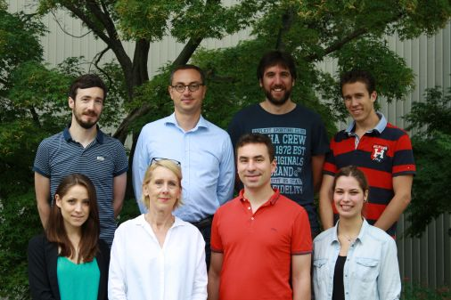 Andreas Fischer and the members of his research Group Vascular Signaling and Cancer.