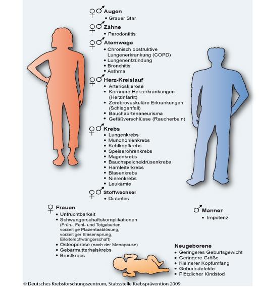 Auswirkungen des Rauchens auf das Kreislaufsystem