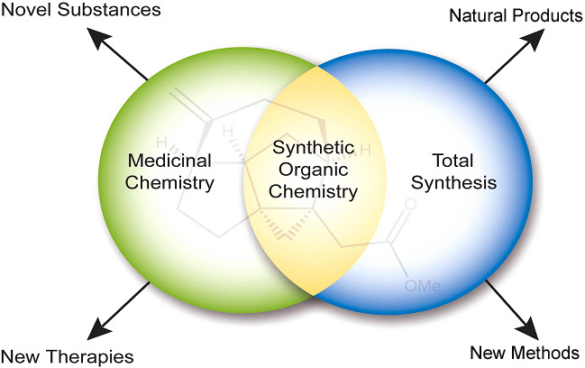 Synthetic Organic Chemistry